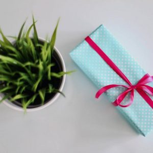 Life is A Gift 21-day Challenge